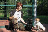 Dackel und Jack Russell Terrier aus Frankfurt