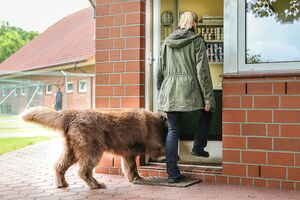 Mensch und Hund gehen gleichzeitig durch die Tür.