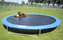 Den Artikel lesen: Trampolin Hunde