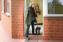 Den Artikel lesen: Mensch oder Hund zuerst durch die Tür?