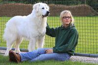 Ein Pyrenäenberghund steht neben einer Frau und lässt sich streicheln.