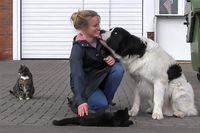 Ein weiß-schwarzer Hund schnüffelt dicht am Gesicht einer blonden Frau.