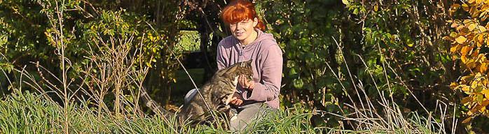 Eine Tierpflegerin füttert einen getigerten Kater aus der Hand.