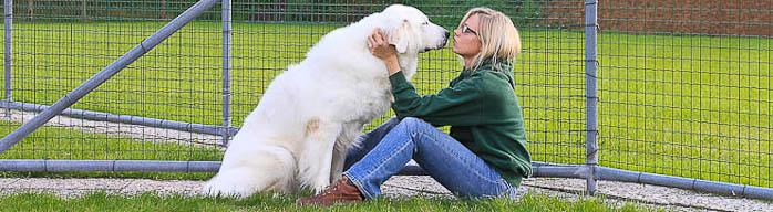 Ramona Lütjohann - ausgebildete Hundetrainerin und Tierpflegerin